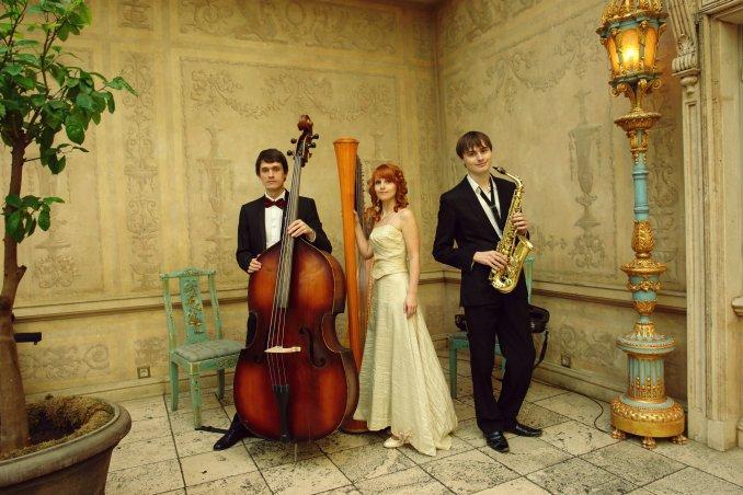 Свадьба. Ресторан Турандот, 25.04.2015г.. Трио MusicaMosaica в составе арфа, саксофон и контрабас.