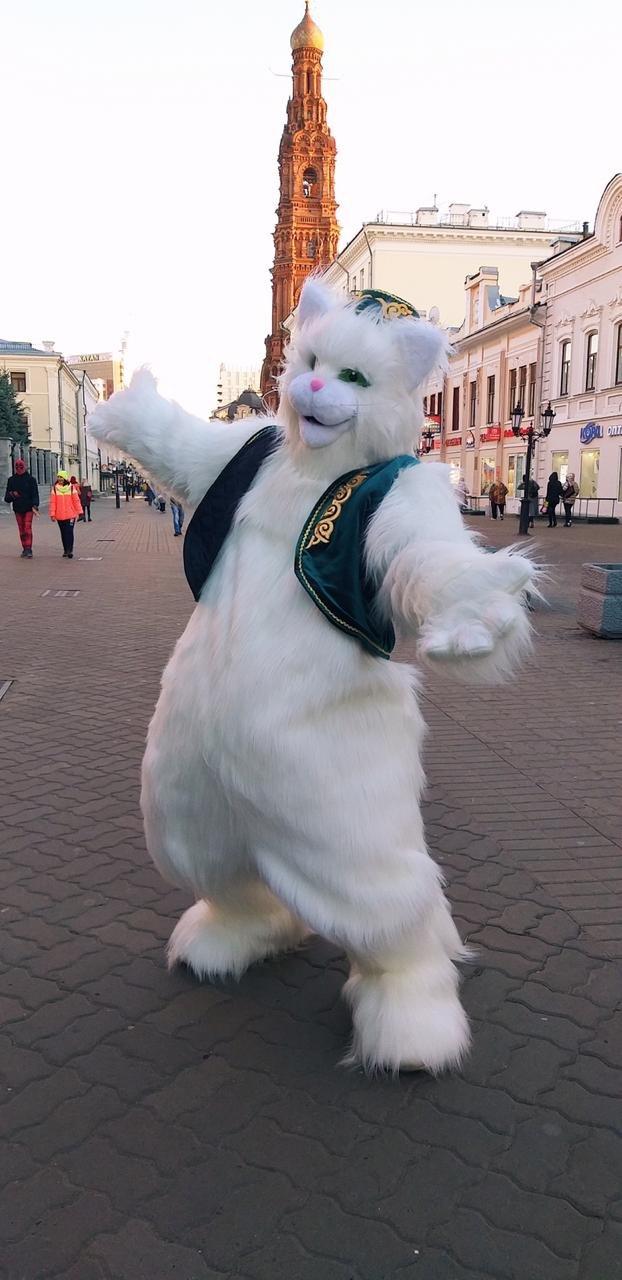 Казанский Кот Рафа