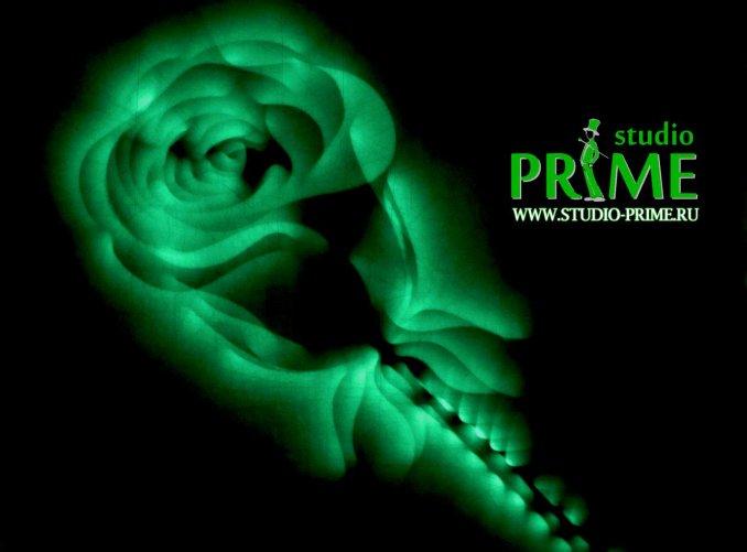 Studio Prime - Студия Прайм